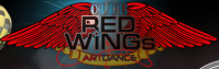 Ночной клуб «Red Wings»